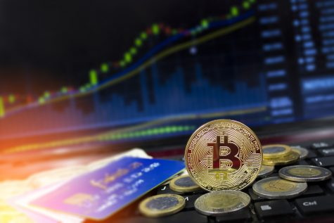 How much to invest cryptocurrency 10000