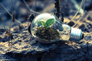 Stuck In a Rut Why Your Business isn't Growing With Your Ambitions
