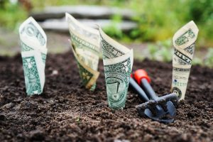 Go Green To Avoid The Red How Eco-Friendly Home Upgrades Aid Your Finances